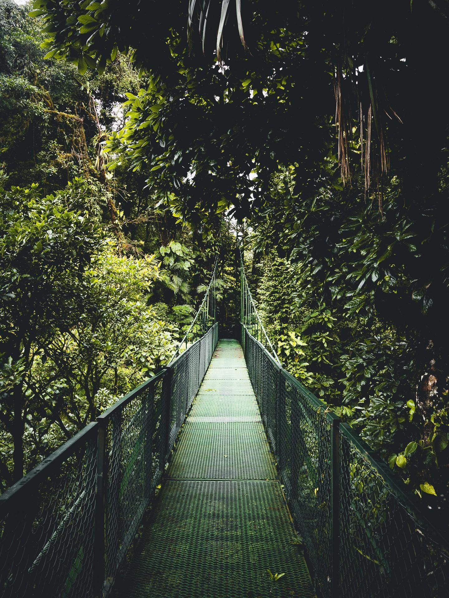 Monteverde, Provincia de Guanacaste